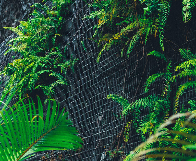 Création d'aménagement de gabions paysagers